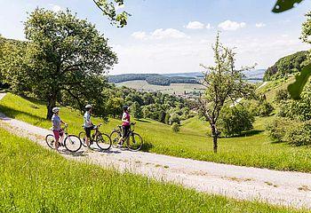 Naturparktouren im Schwäbisch-Fränkischen Wald - aussichtsreiche Höhenzüge in den Löwensteiner Bergen