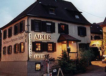 HL_Bad Rappenau_Restaurant Hotel Adler_RadServiceStation