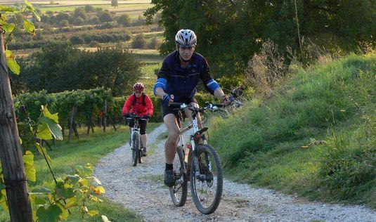Radtouren im Naturpark Neckartal-Odenwald | Foto: Roland Robra, Weinheim