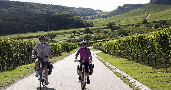 Weinradwege - Unterwegs am Württemberger Weinradweg im HeilbronnerLand