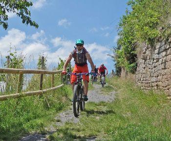 "E-MTB Fahrtechnik - Kurse mit ""Berg Rad Touren"""