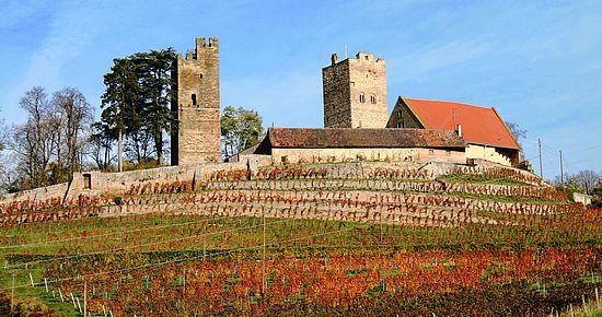 Burg Neipperg im Herbst