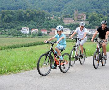 Zahlreiche Burgen und Schlösser können Sie entlang des Neckars entdecken