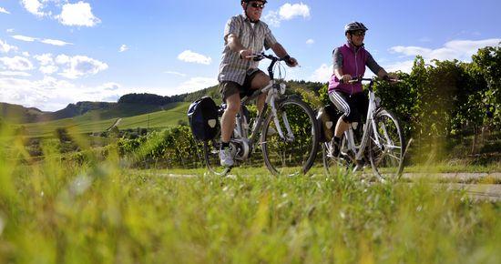 Radfahren rund um den Heuchelberg