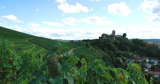 Burg Hohenbeilstein aus der Ferne