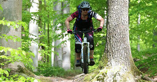 MTB-Touren in den Naturparken - Mountainbike Baden-Württemberg