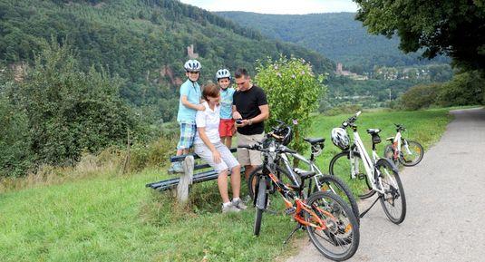 Neckartal-Radweg mit Schloss Zwingenberg