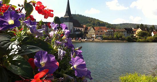 Neckargemünd - die schöne Nachbarin Heidelbergs
