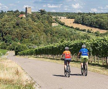 Unterwegs in Deutschlands größter Rotweinlandschaft - das Zabergäu im HeilbronnerLand