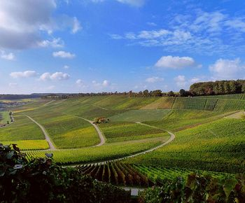 Unterwegs im Naturpark Stromberg-Heuchelberg | Wein.Wald.Wohlfühlen