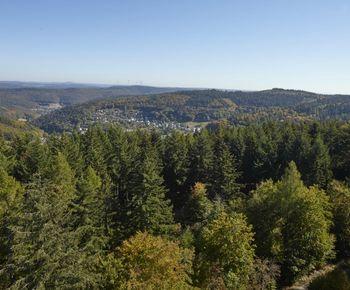 Atmeberaubende Ausblickle sind typisch für den Naturpark Neckartal-Odenwald | Foto: Touristikgemeinschaft Odenwald e.V.
