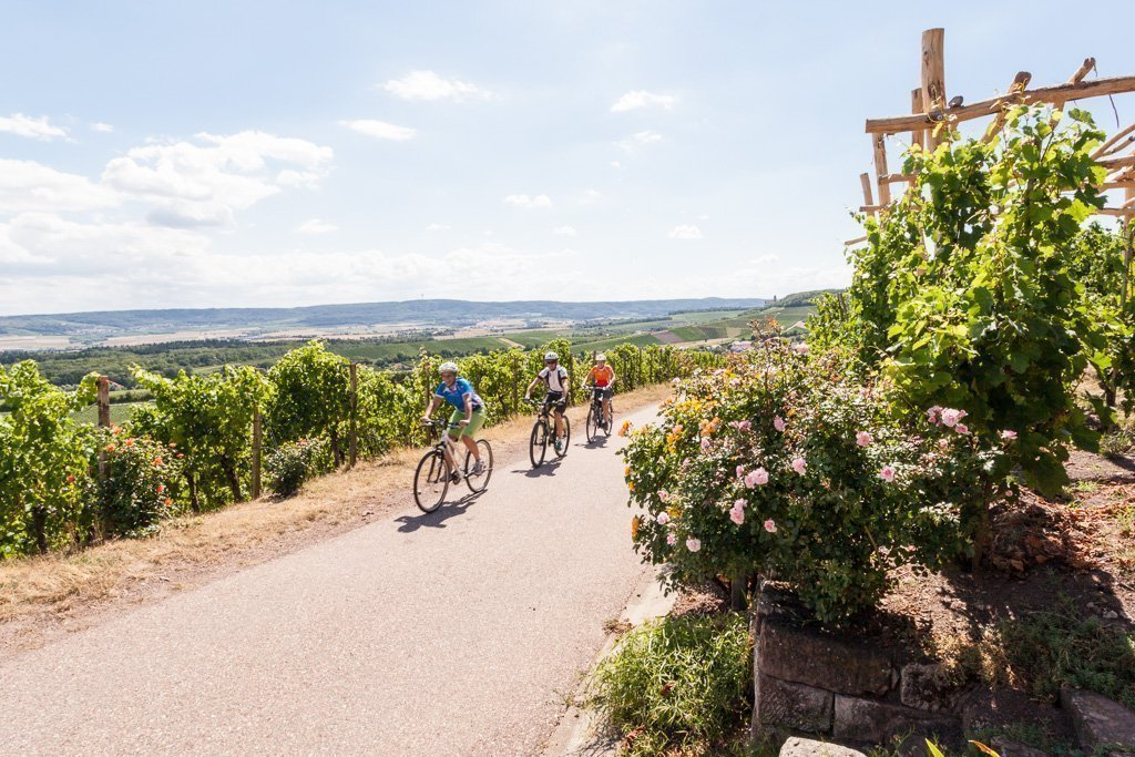 HeilbronnerLand - Radfahren im Weinsüden Baden-Württemberg